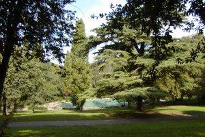 Mes 5 meilleures idées pour un jogging à Rome