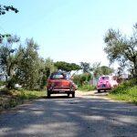 Pour tout savoir sur la Fiat 500 qui fête ses 60 ans