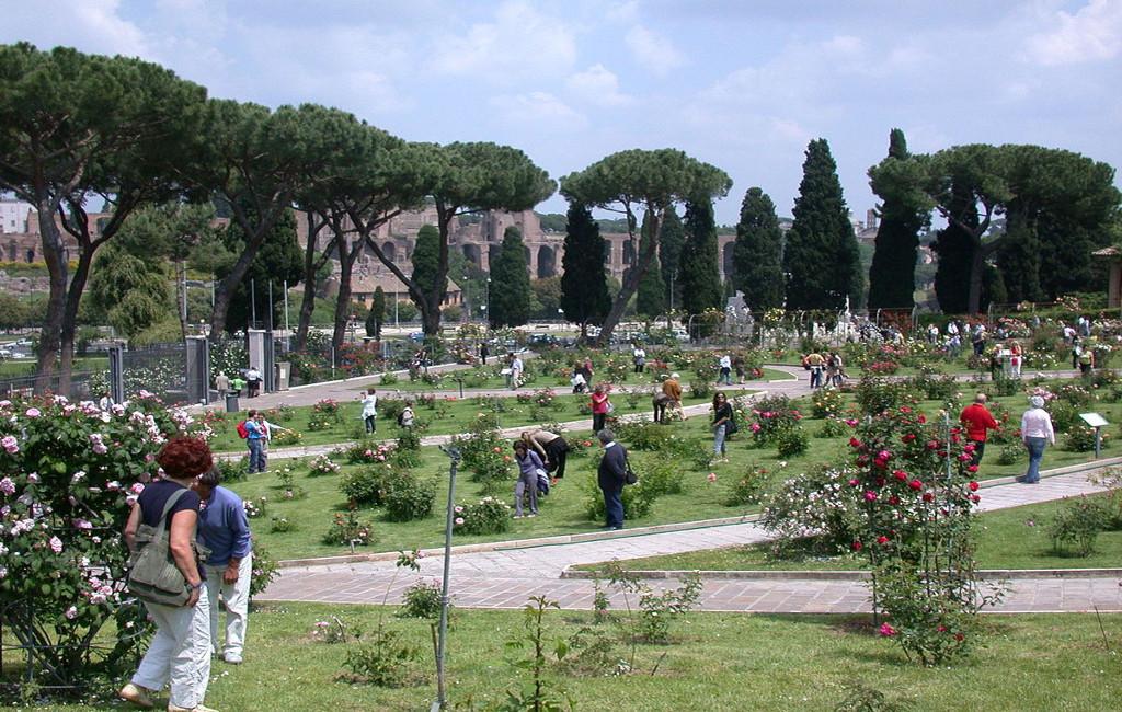 Roma Roseto Comunale printemps