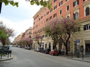 Via_Tiburtina san lorenzo en août
