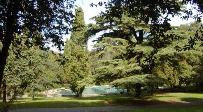 yoga jardins villa borghese