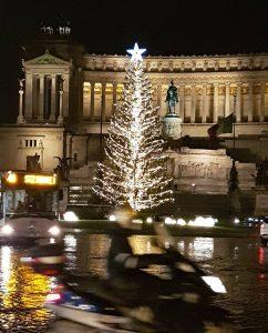 sapin de Noël Rome.