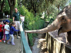 enfants Bioparco Rome
